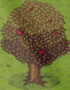 resources_appletree.png